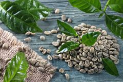 Green coffee beans. On a blue background royalty free stock photos