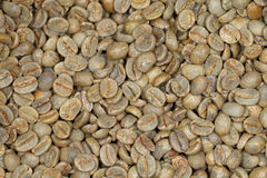 Green coffee beans. Close up of a  delicious organic raw green coffee beans Stock Images