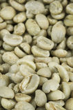 Green Coffee Beans Close-Up Stock Images