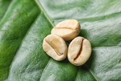 Green coffee beans on fresh lea. F, top view stock photo