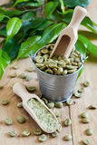 Green coffee. Beans and ground. Selective focus Royalty Free Stock Photos