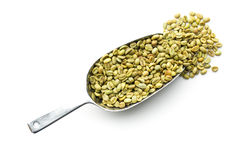 Green coffee beans in metal scoop Stock Image