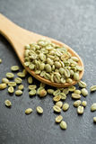Green coffee beans in spoon Royalty Free Stock Image