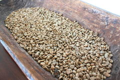 Green coffee beans in wooden bowl. Lot of green coffee beans in wooden bowl Royalty Free Stock Photography