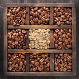 Green coffee and roasted coffee beans Royalty Free Stock Photo