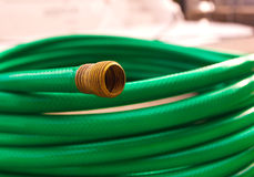 Green coiled rubber hose Stock Image