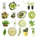 Green collection. (green objects isolated on white Royalty Free Stock Photography