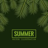 Green color background with side border decorative palm leaves and rectangular frame with summer text. Vector illustration Royalty Free Stock Image