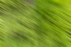 Green color blurry Stock Photos