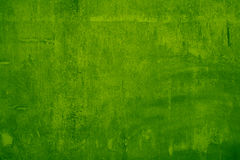 Green color cement wall Royalty Free Stock Photography