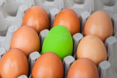 Green color eggs on crate for holiday easter festival, can use a Royalty Free Stock Images