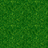 Green color grass vector background. Fresh spring lawn vector illustration. Natural environment backdrop. Soccer. Football texture image Royalty Free Stock Photography