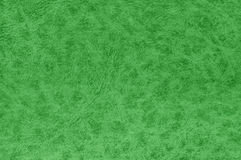 Green color leather surface. Stock Photo