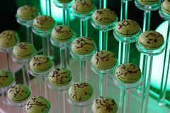 Green color french macaroons tower royalty free stock images