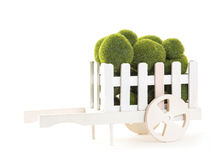 Green color Moss ball in wood cart Royalty Free Stock Photography