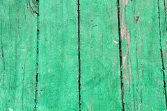 Green color painted old wood Stock Image