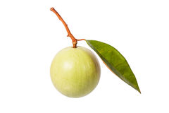 Green color star apple Royalty Free Stock Image