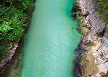 Green color water in mountain river Stock Image
