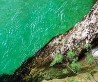 Green color water in mountain river Royalty Free Stock Images