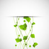 Green color wave with leaves. Stock Photo
