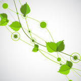 Green color wave with leaves. Royalty Free Stock Image