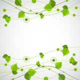 Green color wave with leaves. Stock Image