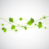 Green color wave with leaves. Stock Photos