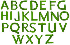 Green colored letters of the alphabet Royalty Free Stock Photo