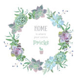 Green colorful succulent Echeveria vector design round frame royalty free illustration