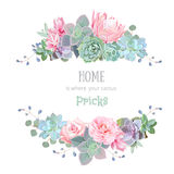 Green colorful succulents vector design round frame.