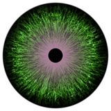 Green colorized eye texture stock illustration