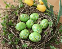 Green easter eggs with flower decor stock image
