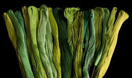 Green coloured yarns. Bound together on a black background Royalty Free Stock Photo