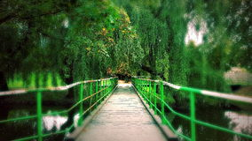 Green colours. Phantom3 castle shot stock photography