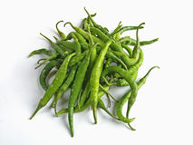 Green common Chilies Stock Photography