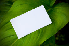 Green communication Royalty Free Stock Photography