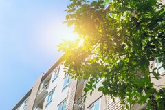 Green community Eco building apartment with tree royalty free stock photos