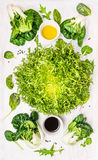 Green Composition with salad,wild herbs, baby bok choy and dressing Stock Photography