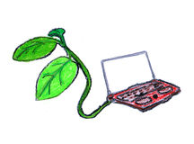 Green computing. A laptop being powered by a tree, hand drawn on white Royalty Free Stock Images