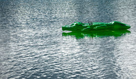 Green conceited crocodile to the play in the water. Green crocodile from rubber swims only on a lake stock images