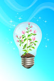 Green concept Royalty Free Stock Photography