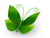 Green concept Stock Images