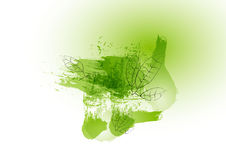 Green concept leave line with green watercolor design ,vector illustration Royalty Free Stock Image