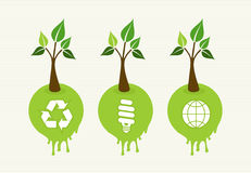 Green concept tree icon set Royalty Free Stock Image