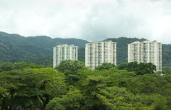 Green condominium royalty free stock photos