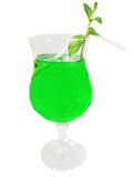 Green cordial with mint Stock Images