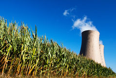 Green corn field against nuclear power plant Stock Photo
