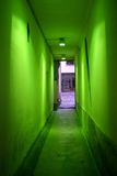 Green corridor. Corridor with a green lighting Stock Image