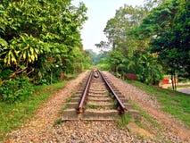 Green Corridor, Singapore. Nature trail along former railway track near Bukit Timah Nature Reserve Stock Images