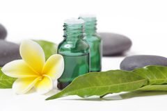 Green cosmetic bottles with zen stones and frangipani flower. Isolated on white royalty free stock photography